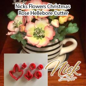 Nicks Flowers Christmas Rose Hellebore Cutter