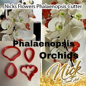 Nicks Flowers Phalaenopsis Cutter